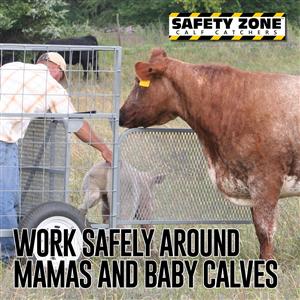 Safety Zone Calf Catchers